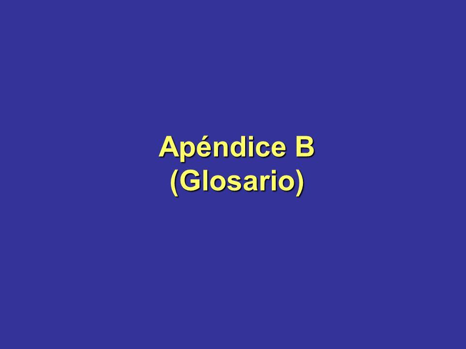 Apéndice B (Glosario)