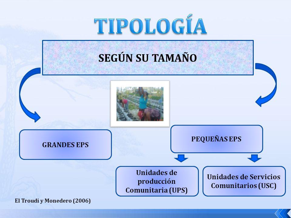 SEGÚN SU TAMAÑO GRANDES EPS PEQUEÑAS EPS El Troudi y Monedero (2006) Unidades de producción Comunitaria (UPS) Unidades de Servicios Comunitarios (USC)