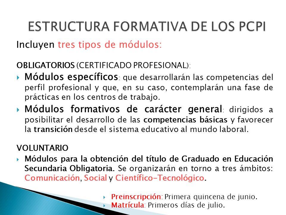 PROGRAMAS DE CUALIFICACIÓN PROFESIONAL También permiten obtener el título de Graduado en Educación Secundaria Obligatoria, al tiempo que se pueden des