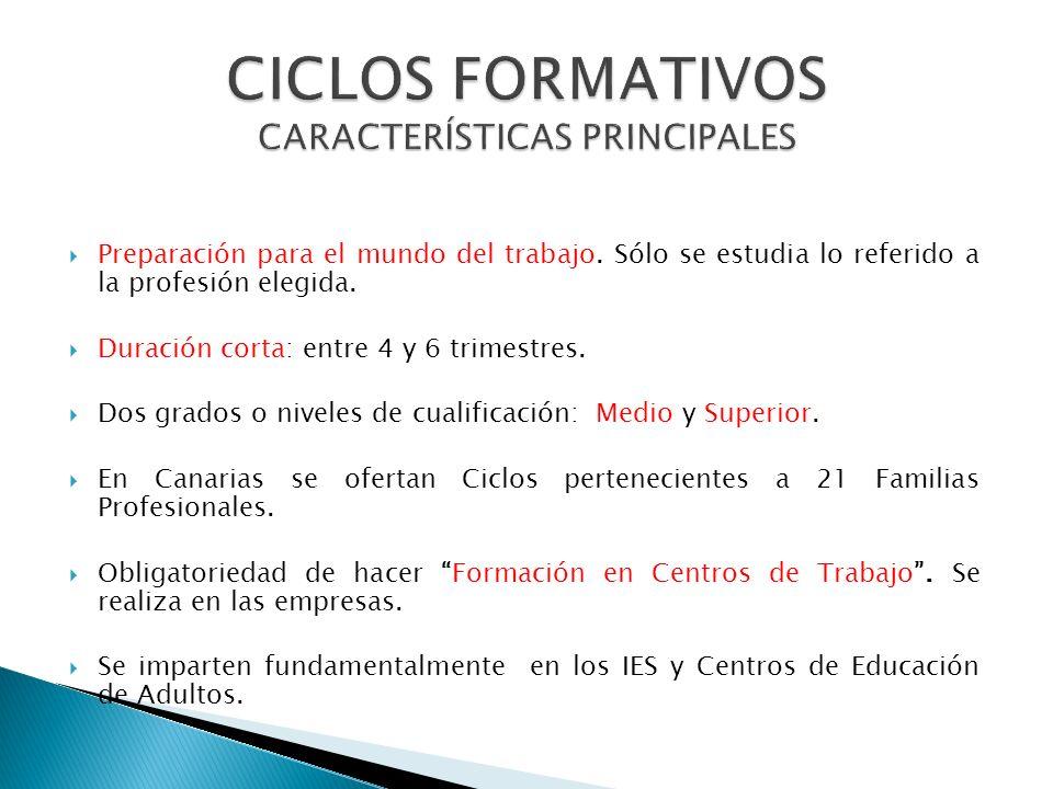 Incluyen tres tipos de módulos: OBLIGATORIOS (CERTIFICADO PROFESIONAL ): Módulos específicos : que desarrollarán las competencias del perfil profesion