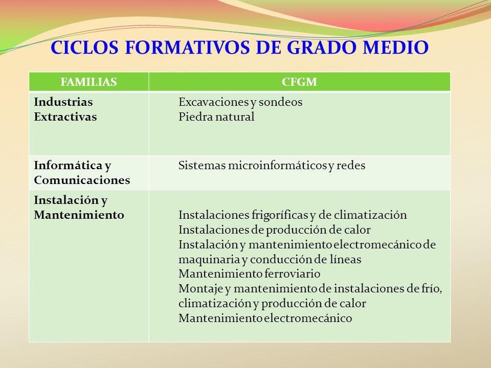 CICLOS FORMATIVOS DE GRADO MEDIO FAMILIASCFGM Industrias Extractivas Excavaciones y sondeos Piedra natural Informática y Comunicaciones Sistemas micro