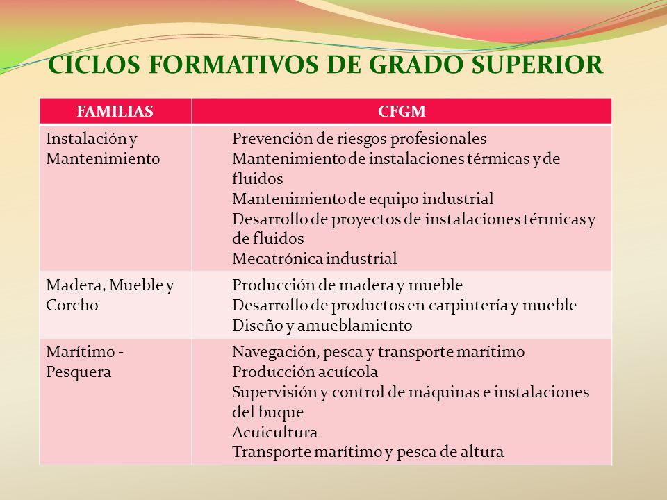 CICLOS FORMATIVOS DE GRADO SUPERIOR FAMILIASCFGM Instalación y Mantenimiento Prevención de riesgos profesionales Mantenimiento de instalaciones térmic