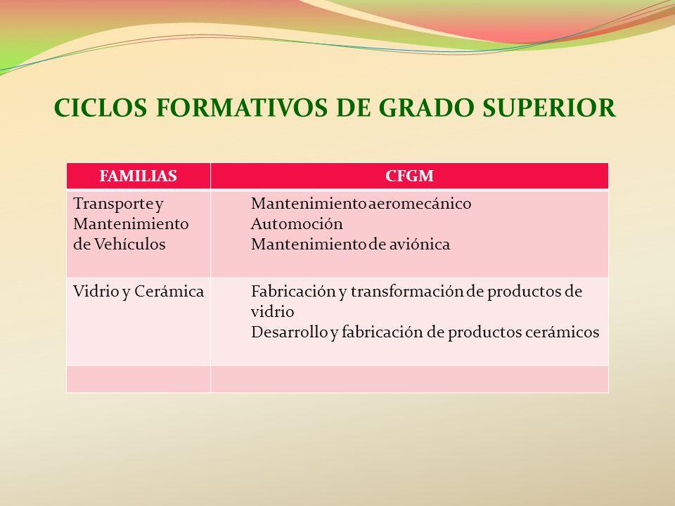 CICLOS FORMATIVOS DE GRADO SUPERIOR FAMILIASCFGM Transporte y Mantenimiento de Vehículos Mantenimiento aeromecánico Automoción Mantenimiento de avióni