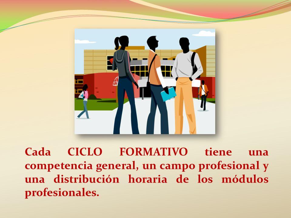 PASO DE UNOS ESTUDIOS PROFESIONALES A OTROS DESDE UN CICLO FORMATIVO DE GRADO MEDIO (CFGM): BACHILLERATO.
