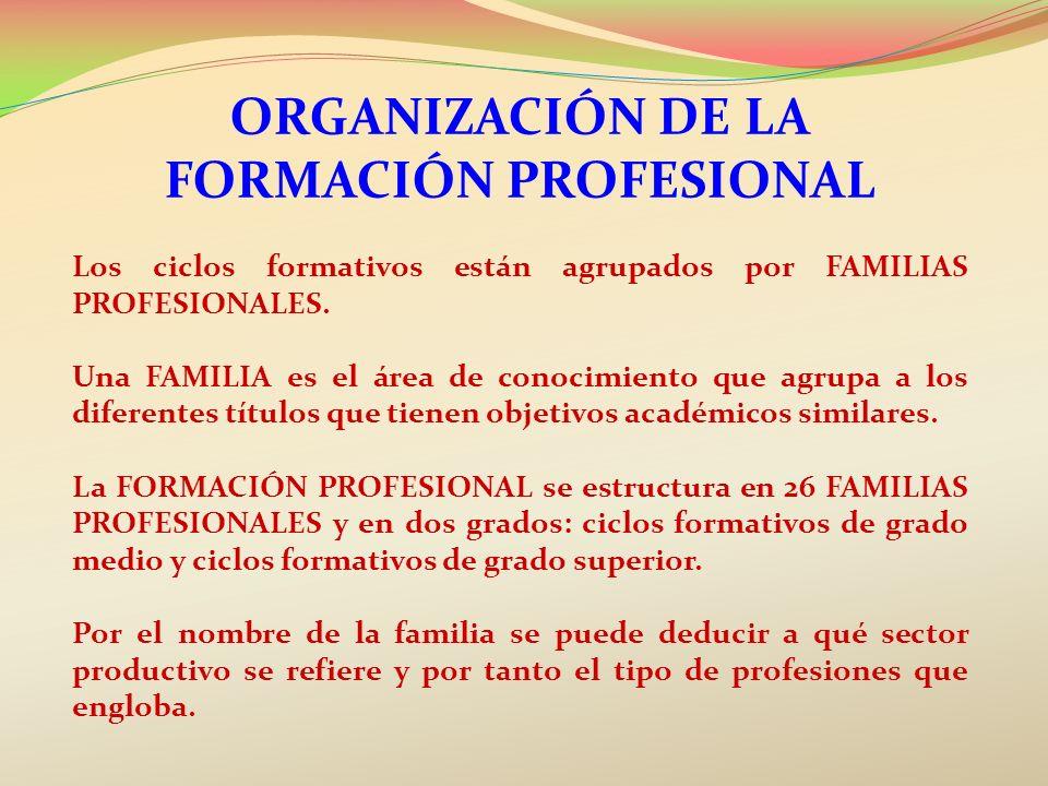 ORGANIZACIÓN DE LA FORMACIÓN PROFESIONAL Los ciclos formativos están agrupados por FAMILIAS PROFESIONALES. Una FAMILIA es el área de conocimiento que