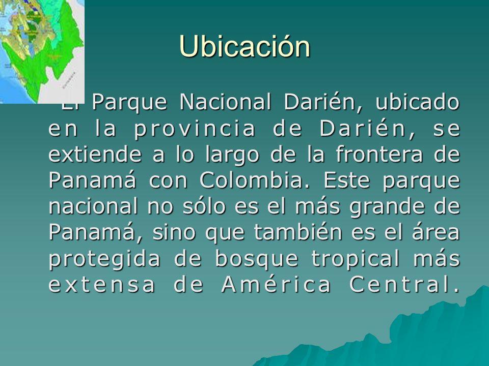 Ubicación El Parque Nacional Darién, ubicado en la provincia de Darién, se extiende a lo largo de la frontera de Panamá con Colombia. Este parque naci