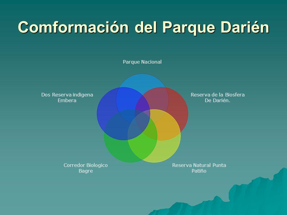 Comformación del Parque Darién Parque Nacional Reserva de la Biosfera De Darién. Reserva Natural Punta Patiño Corredor Biologico Bagre Dos Reserva ind