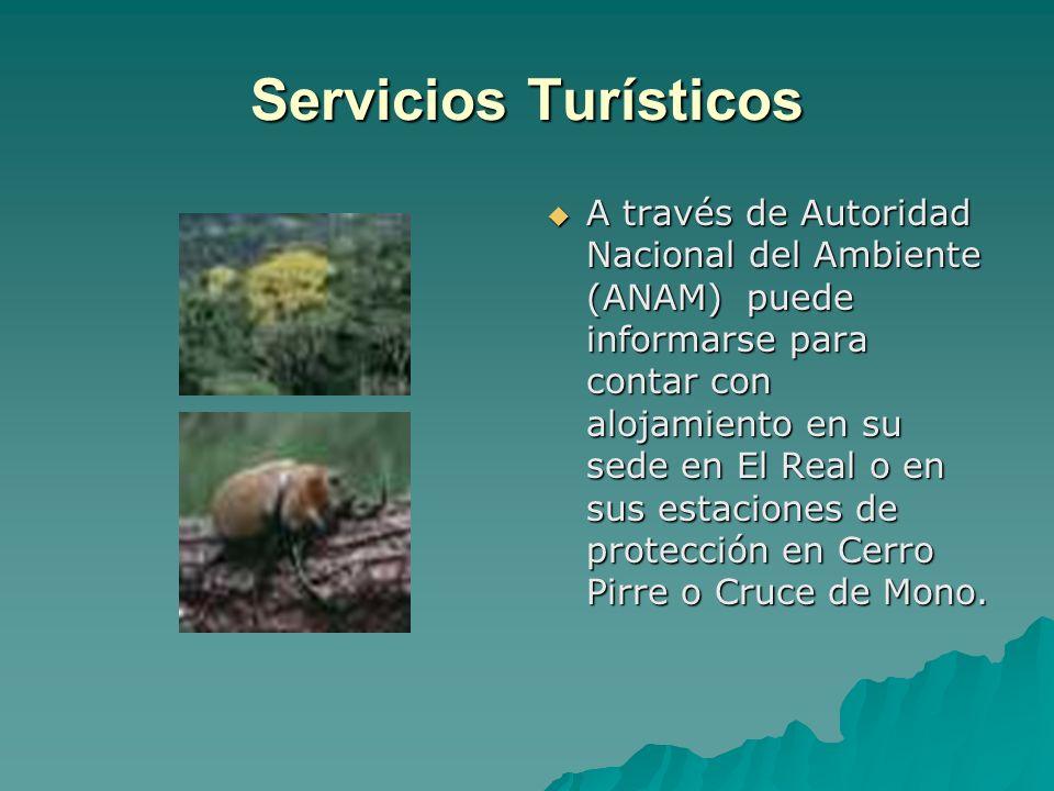 Servicios Turísticos A través de Autoridad Nacional del Ambiente (ANAM) puede informarse para contar con alojamiento en su sede en El Real o en sus es