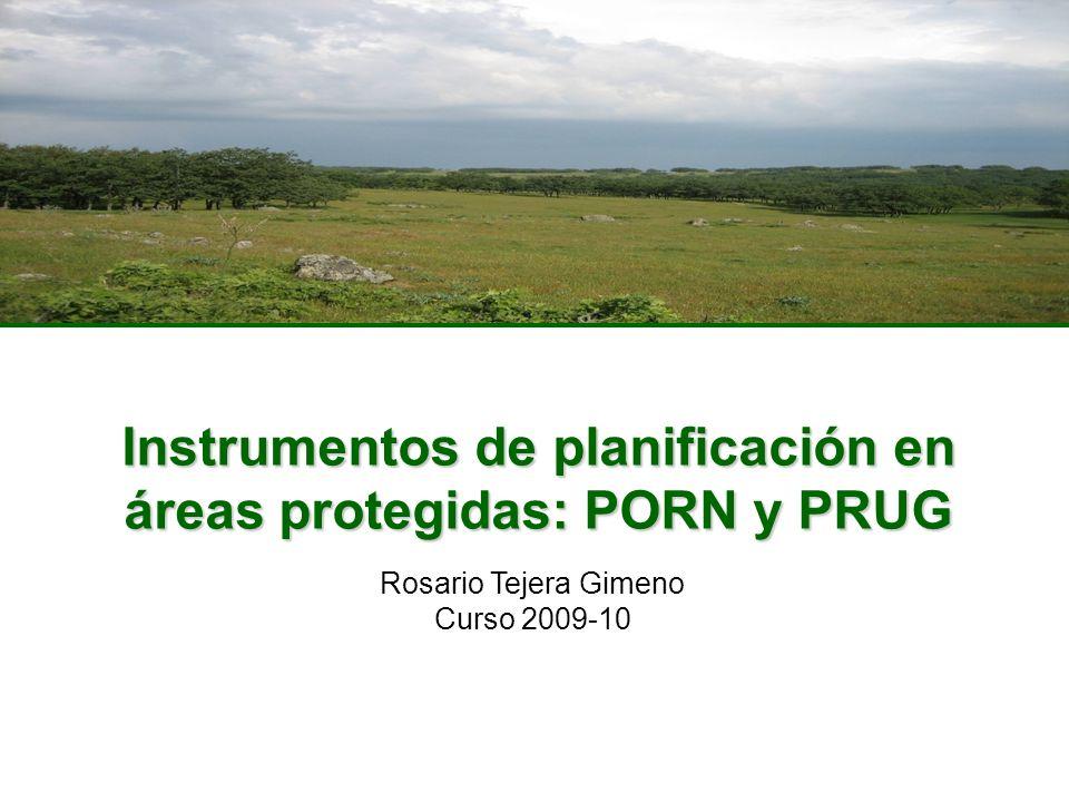 Instrumentos de planificación en áreas protegidas: PORN y PRUG Rosario Tejera Gimeno Curso 2009-10