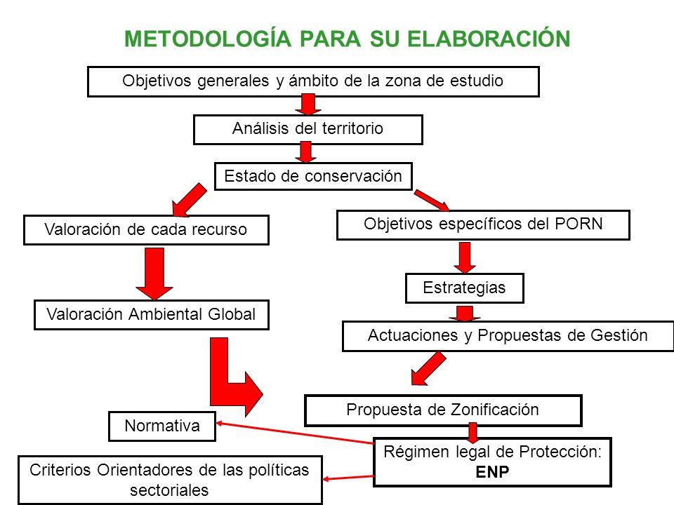 METODOLOGÍA PARA SU ELABORACIÓN Objetivos generales y ámbito de la zona de estudio Análisis del territorio Estado de conservación Valoración de cada r
