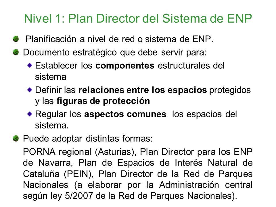 Nivel 1: Plan Director del Sistema de ENP Planificación a nivel de red o sistema de ENP. Documento estratégico que debe servir para: Establecer los co
