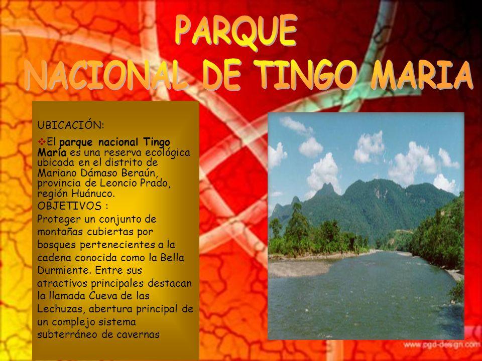 UBICACIÓN: Se ubica al suroeste del Perú, ubicado parcialmente en las regiones de Madre de Dios y Cusco, en las provincias de Manu y Paucartambo. OBJE