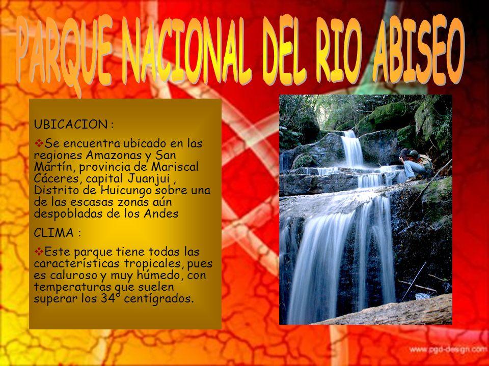 UBICACIÓN: El parque nacional Tingo María es una reserva ecológica ubicada en el distrito de Mariano Dámaso Beraún, provincia de Leoncio Prado, región