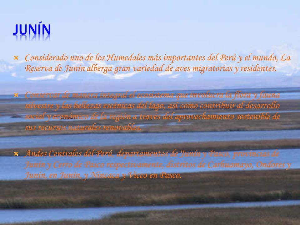 UBICACION : Se encuentra ubicado en Santiago de Chuco en el departamento de la Libertad. OBJETIVO: El objetivo por el cual fue creado este parque fue