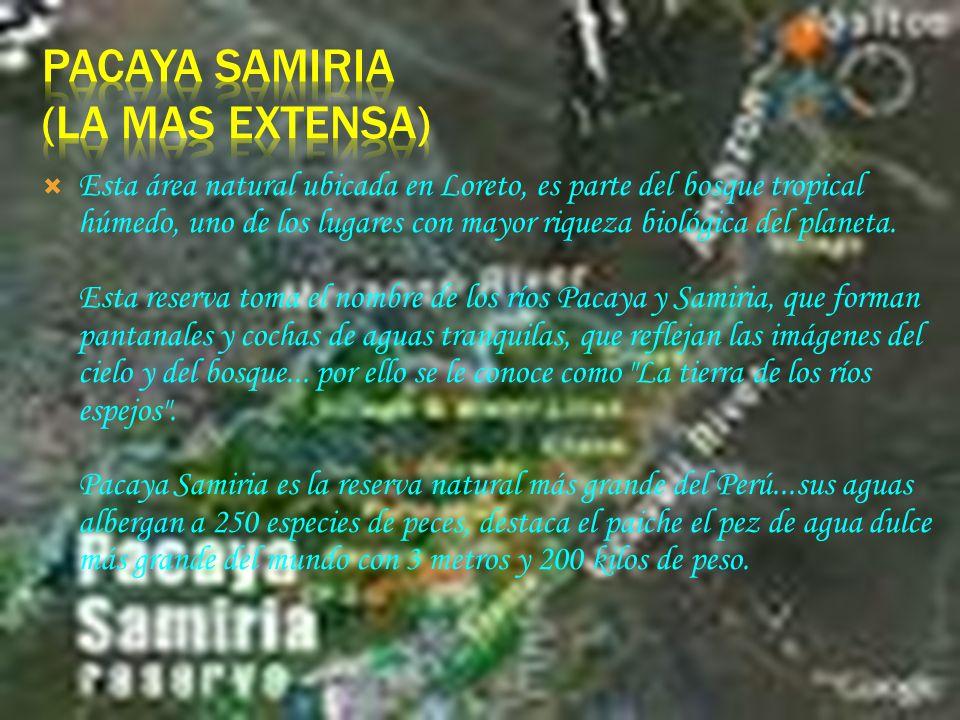 Ubicada a 105 km al norte de Lima, entre las provincias de Chancay y Huaral, abarca una extensión de 5 070 Ha. La Reserva, creada en 1977 protege una