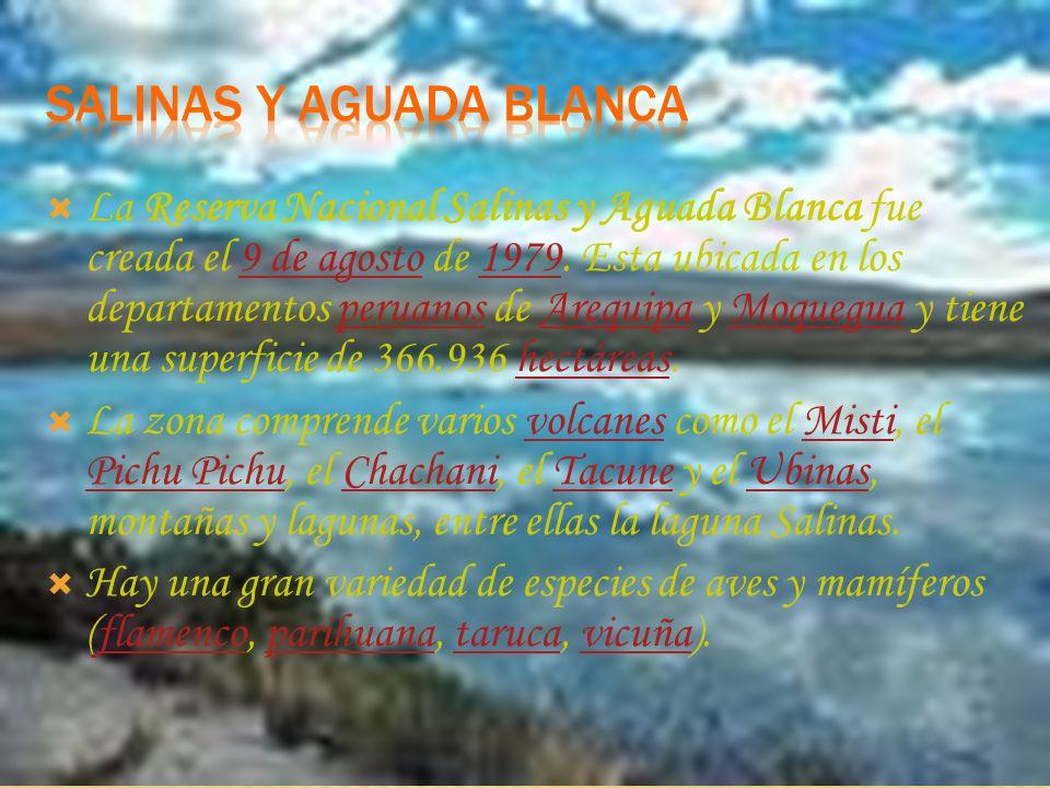 La Reserva Nacional de Paracas fue creada el 25 de Septiembre del año 1975. Fue creada con el fin de conservar una porción del mar y del desierto del