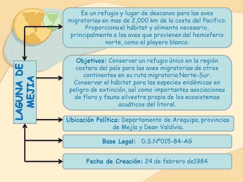 CALIPUY Alberga uno de los relictos mas importantes a nivel nacional de Puya Raimondi. Esta área natural protegida también presenta diversas especies