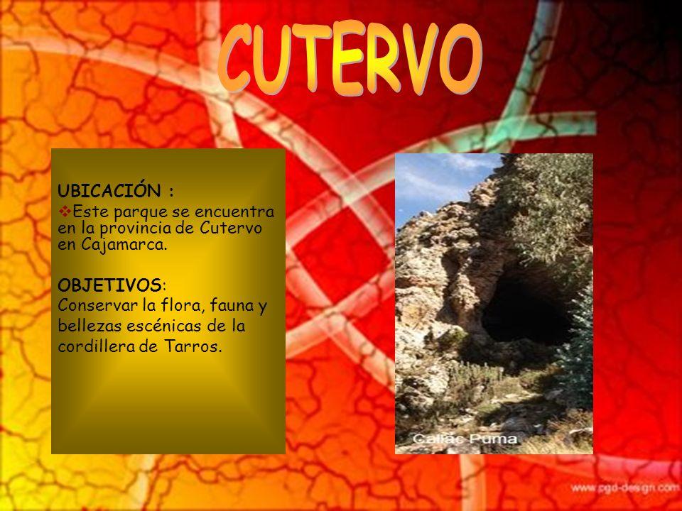 UBICACIÓN : Este parque se encuentra en Contralmirante Villar en Tumbes, en Sullana (Piura). OBJETIVOS: Conservar areas naturales de los bosque secos