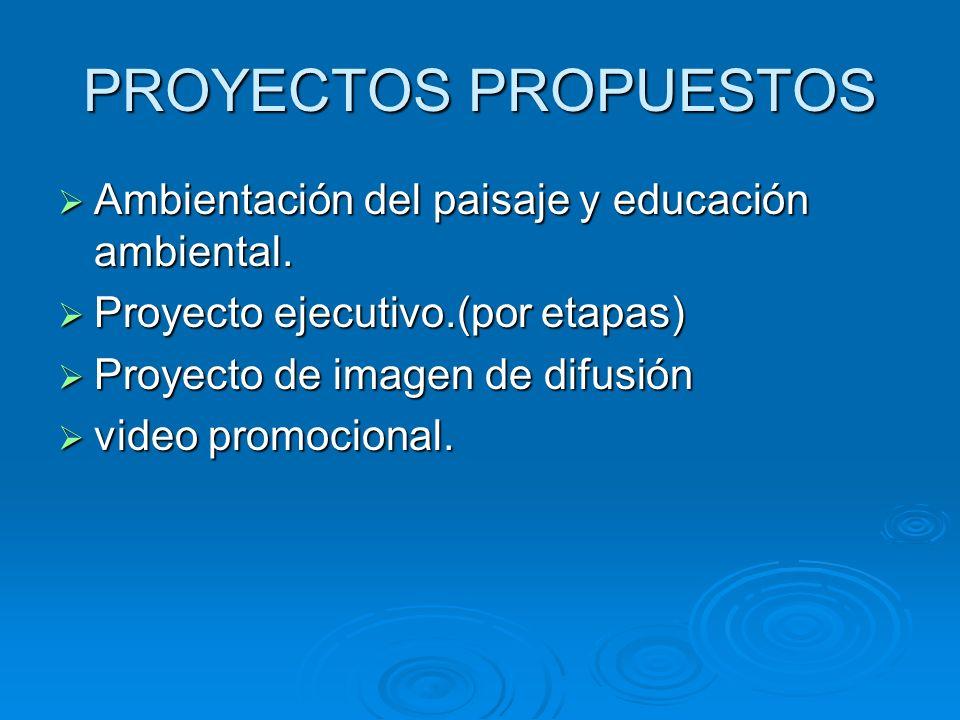 Que necesitamos. Readaptación del proyecto conceptual Readaptación del proyecto conceptual Proyecto de ambientación y educación ambiental. Proyecto de