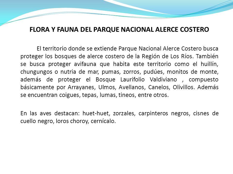 FLORA Y FAUNA DEL PARQUE NACIONAL ALERCE COSTERO El territorio donde se extiende Parque Nacional Alerce Costero busca proteger los bosques de alerce costero de la Región de Los Ríos.