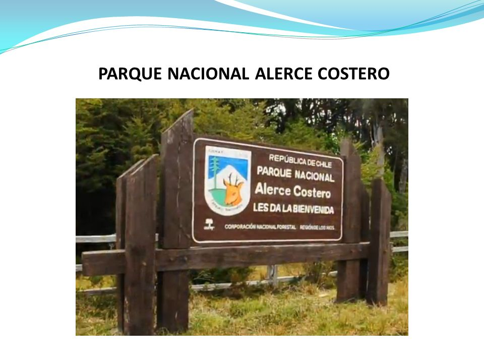 El Parque Nacional Alerce Costero fue creado inaugurado recientemente el 03 de Febrero de 2012, el Parque se encuentra compuesto por La Reserva Nacional (RN) Valdivia y Monumento Nacional (MN) Alerce Costero, parte del predio fiscal Quitaluto y una superficie de 9.500 ha de la Reserva Costera Valdiviana, donadas por TNC al Estado de Chile, con unas 25.000 hectáreas iniciales.