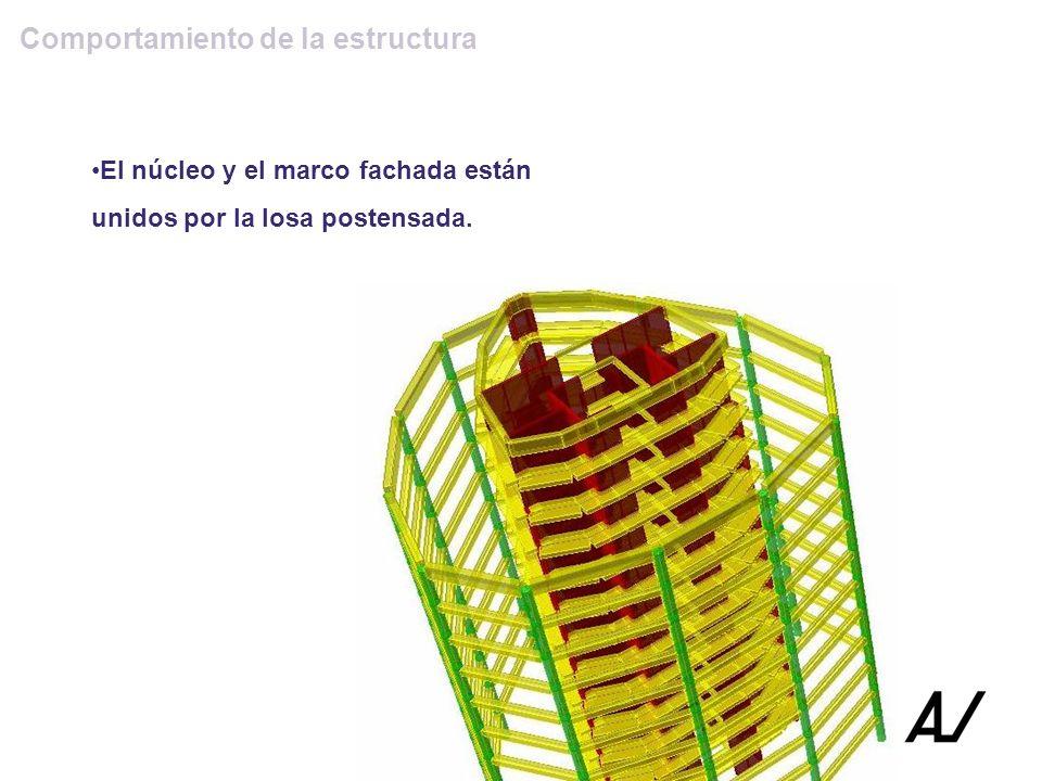 Comportamiento de la estructura El núcleo y el marco fachada están unidos por la losa postensada.