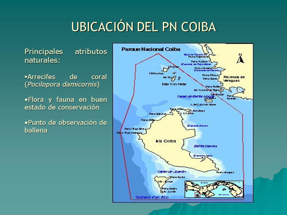 UBICACIÓN DEL PN COIBA Principales atributos naturales: Arrecifes de coral (Pocilopora damicornis) Arrecifes de coral (Pocilopora damicornis) Flora y