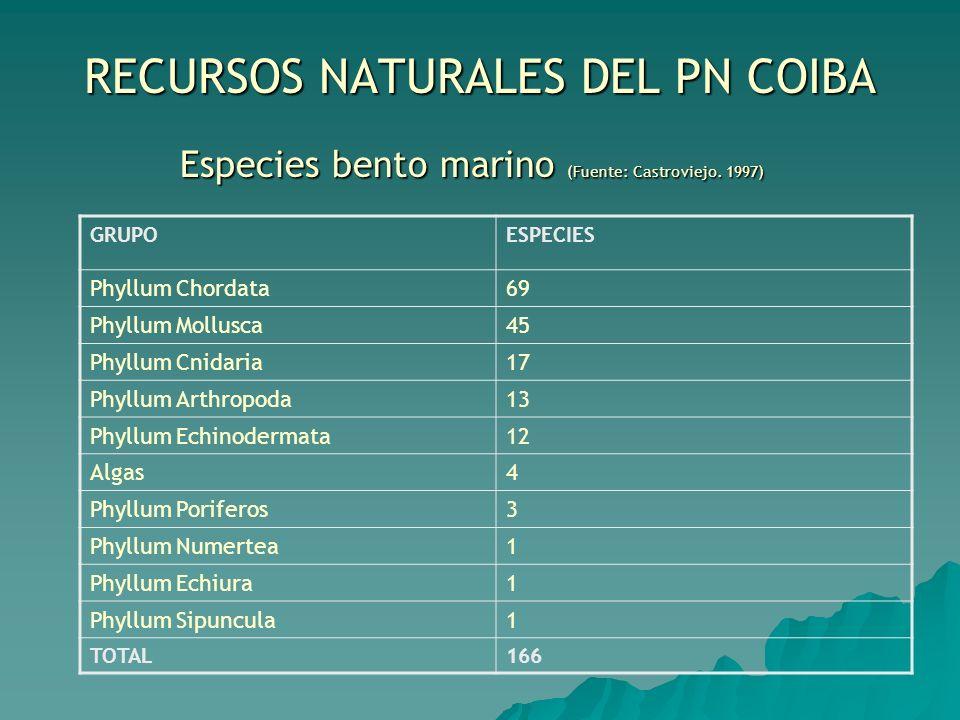 RECURSOS NATURALES DEL PN COIBA Especies bento marino (Fuente: Castroviejo. 1997) GRUPOESPECIES Phyllum Chordata69 Phyllum Mollusca45 Phyllum Cnidaria