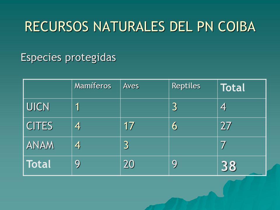 RECURSOS NATURALES DEL PN COIBA Especies protegidas Especies protegidas MamíferosAvesReptiles Total UICN134 CITES417627 ANAM437 920938