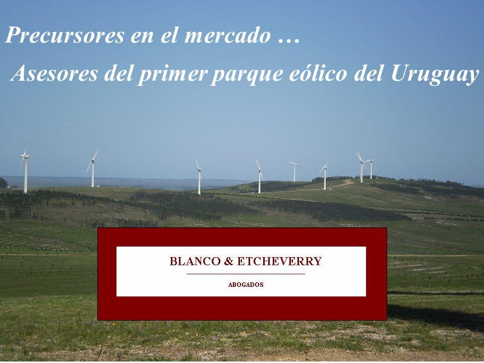 Aspectos legales y prácticos de la instalación de un parque eólico a la luz de la experiencia pasada I.