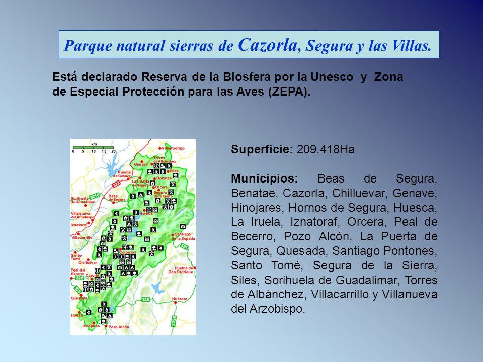 Parque natural sierras de Cazorla, Segura y las Villas. Superficie: 209.418Ha Municipios: Beas de Segura, Benatae, Cazorla, Chilluevar, Genave, Hinoja
