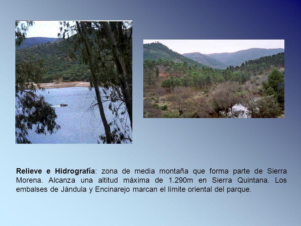 Relieve e Hidrografía: zona de media montaña que forma parte de Sierra Morena. Alcanza una altitud máxima de 1.290m en Sierra Quintana. Los embalses d