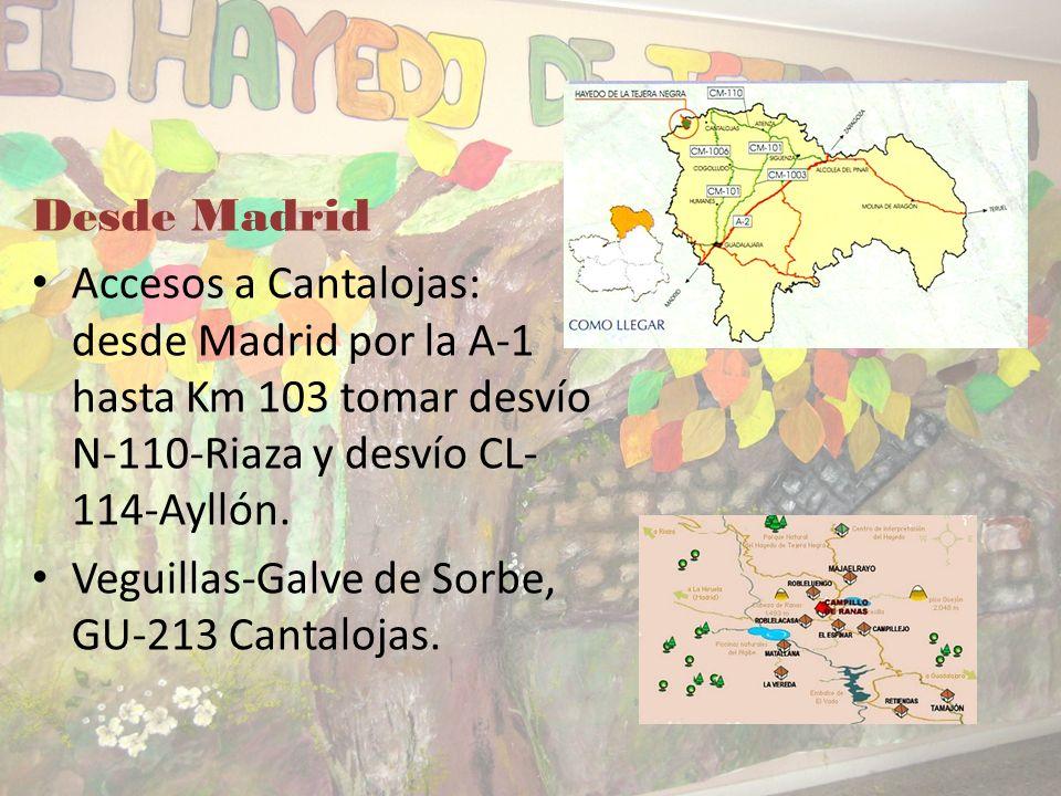 CÓMO LLEGAR Desde Guadalajara Desde Guadalajara por la CM-101 dirección Fontanar-Fuencemillán, CM-1001 Humanes- Cogolludo, CM-1006 Este es el pueblo m