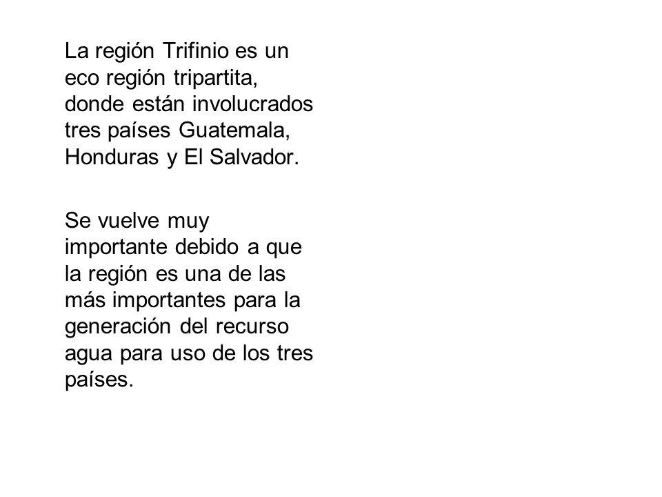 La región Trifinio es un eco región tripartita, donde están involucrados tres países Guatemala, Honduras y El Salvador. Se vuelve muy importante debid