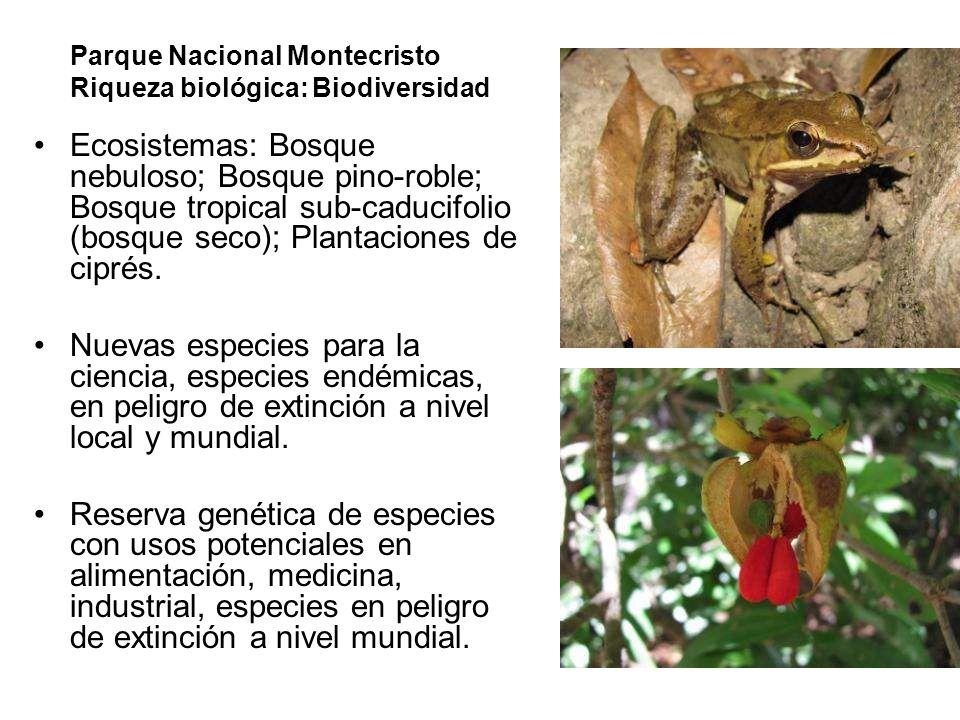 Parque Nacional Montecristo Riqueza biológica: Biodiversidad Ecosistemas: Bosque nebuloso; Bosque pino-roble; Bosque tropical sub-caducifolio (bosque