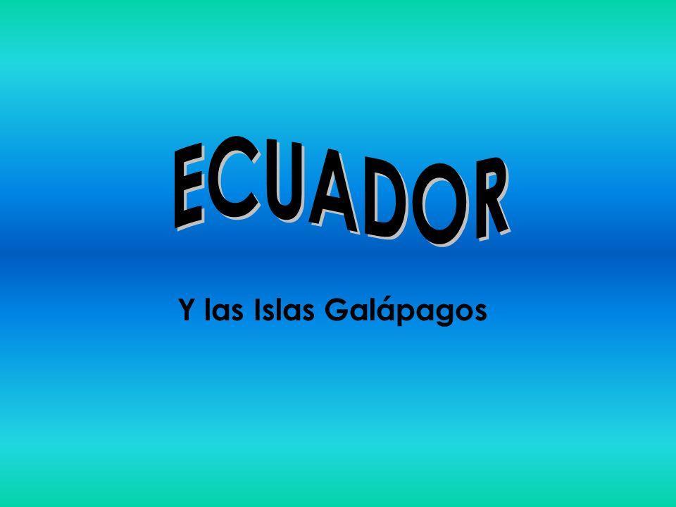 22 Turismo Sitios de interés Parques nacionales –Desde hace 40 años > creación de áreas especiales – 15 áreas protegidas: Parque Nacional Galápagos, P.N.