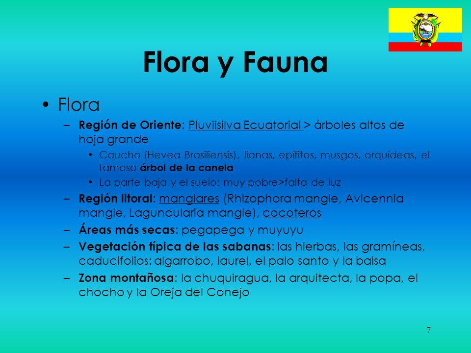 7 Flora y Fauna Flora – Región de Oriente : Pluviisilva Ecuatorial > árboles altos de hoja grande Caucho (Hevea Brasiliensis), lianas, epífitos, musgo