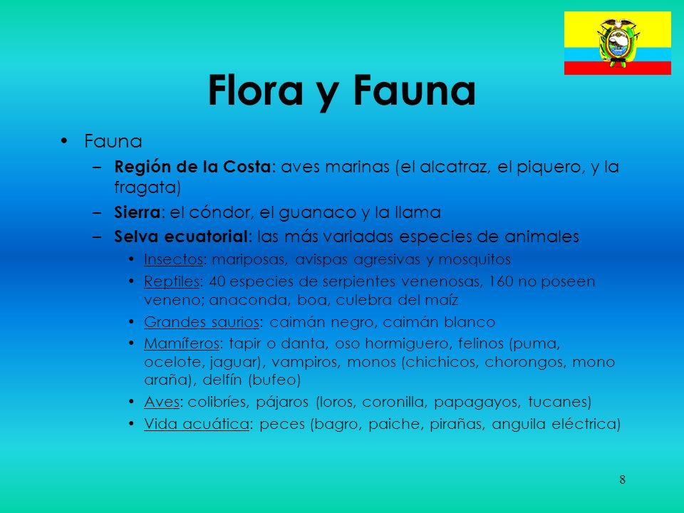 8 Flora y Fauna Fauna – Región de la Costa : aves marinas (el alcatraz, el piquero, y la fragata) – Sierra : el cóndor, el guanaco y la llama – Selva