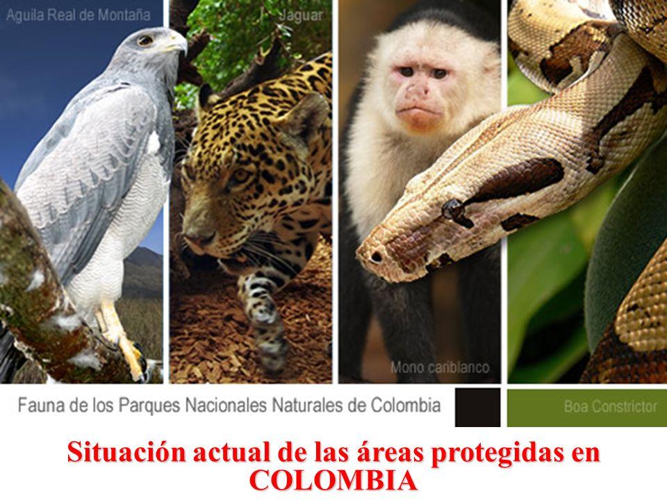 Situación actual de las áreas protegidas en COLOMBIA