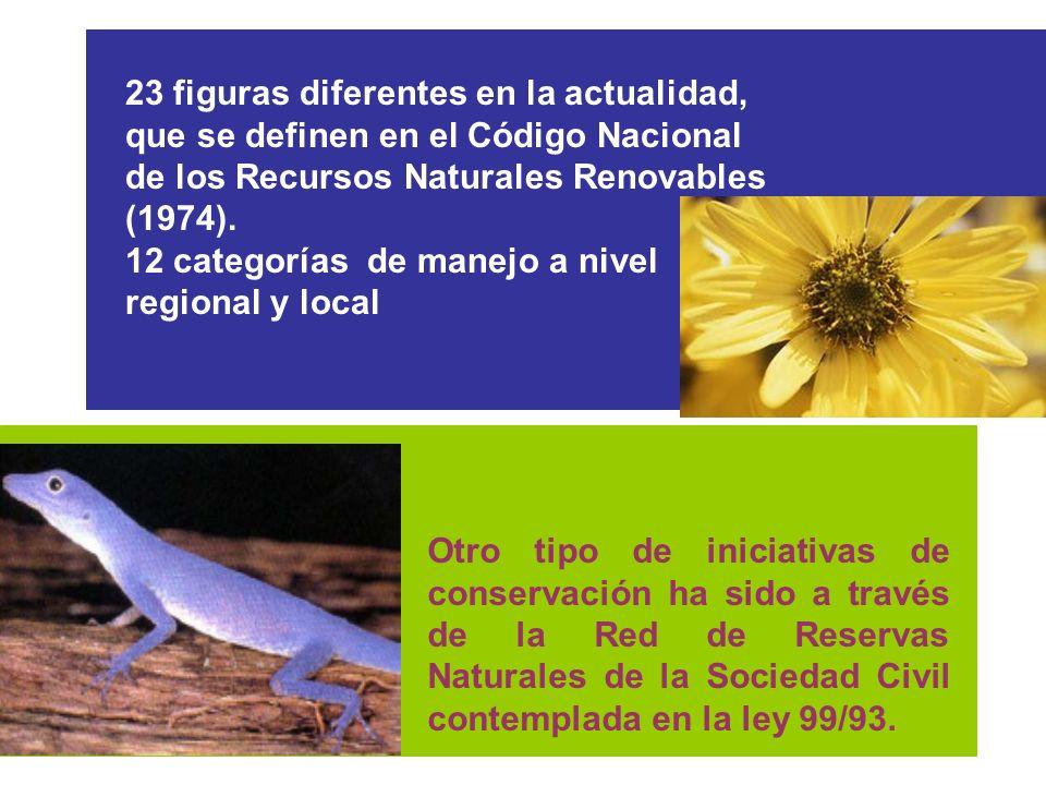 23 figuras diferentes en la actualidad, que se definen en el Código Nacional de los Recursos Naturales Renovables (1974). 12 categorías de manejo a ni