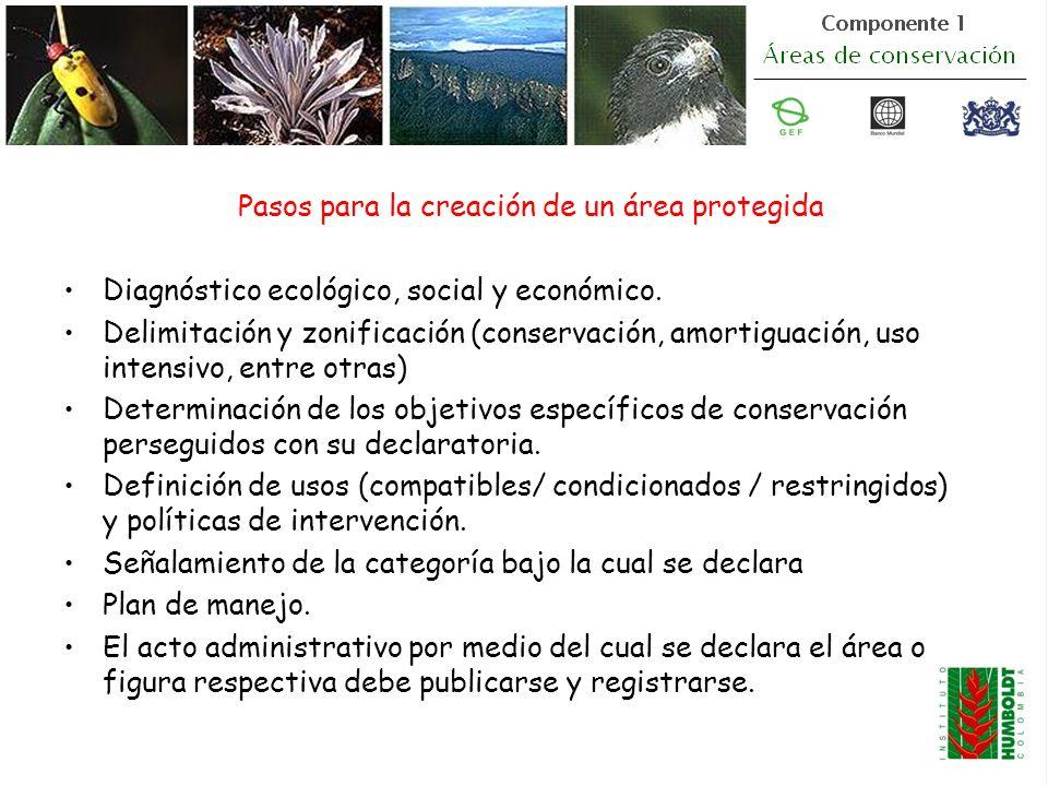 Pasos para la creación de un área protegida Diagnóstico ecológico, social y económico. Delimitación y zonificación (conservación, amortiguación, uso i