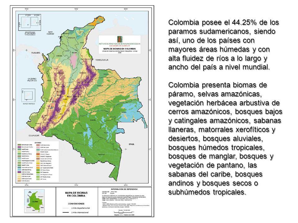 Colombia posee el 44.25% de los paramos sudamericanos, siendo así, uno de los países con mayores áreas húmedas y con alta fluidez de ríos a lo largo y