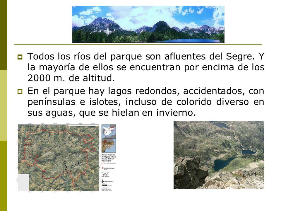Todos los ríos del parque son afluentes del Segre.