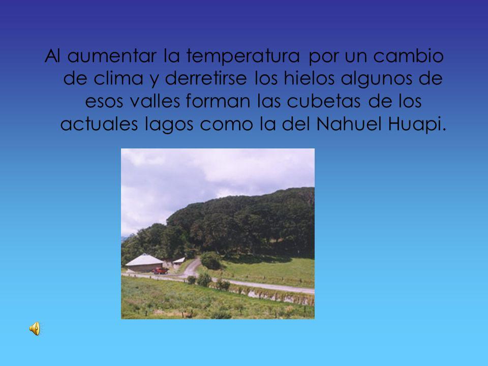 Clima El bosque de los Arrayanes presenta un clima que caracteriza al área es templado-frío.