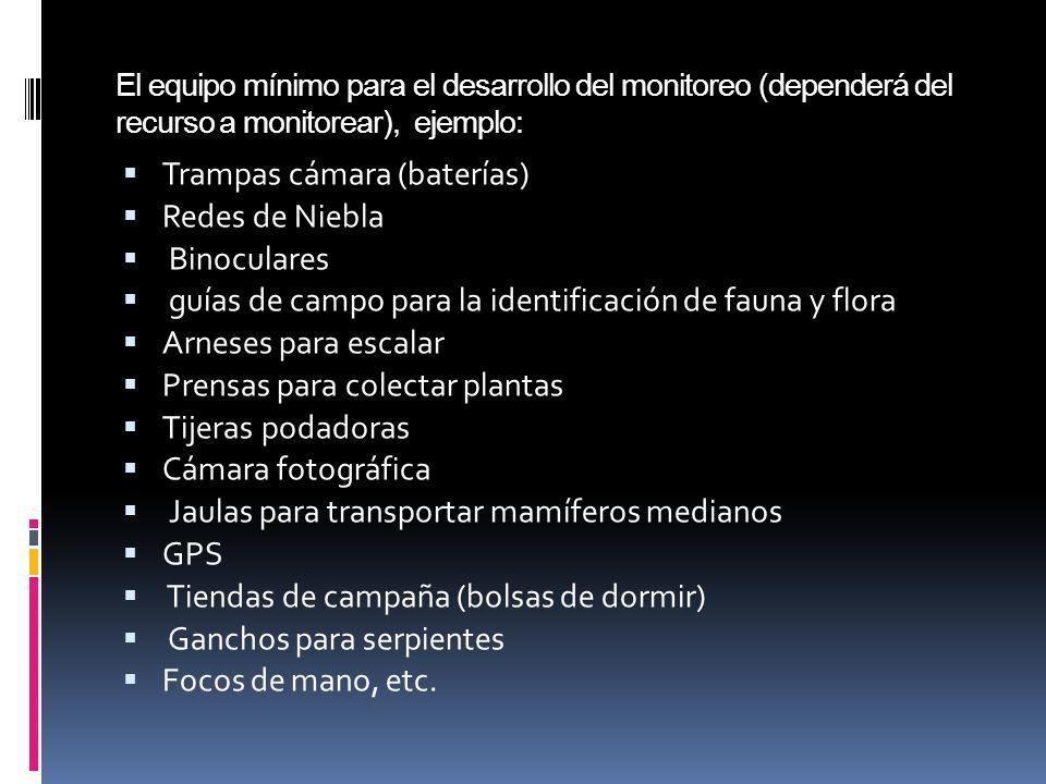 ACTIVIDADES DE LOS DEPARATAMENTOS DE DVS Y DAP 2013: Recopilar y ordenar la información existente de los monitoreos biológicos realizados en Áreas Protegidas.