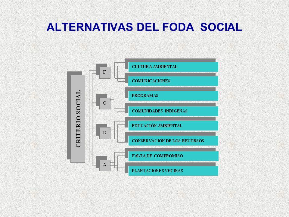 ALTERNATIVAS DEL FODA SOCIAL