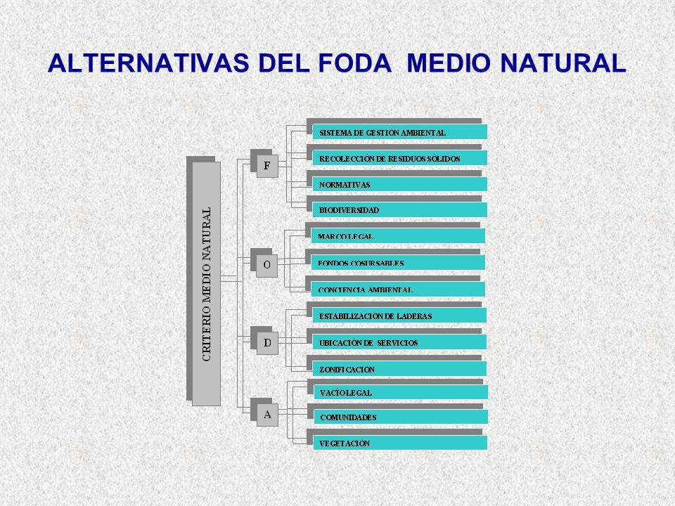 ALTERNATIVAS DEL FODA MEDIO NATURAL