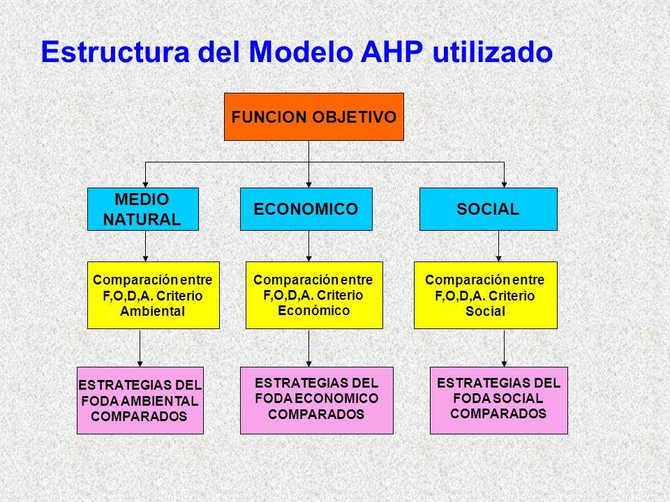 Estructura del Modelo AHP utilizado FUNCION OBJETIVO MEDIO NATURAL ECONOMICOSOCIAL Comparación entre F,O,D,A. Criterio Ambiental Comparación entre F,O
