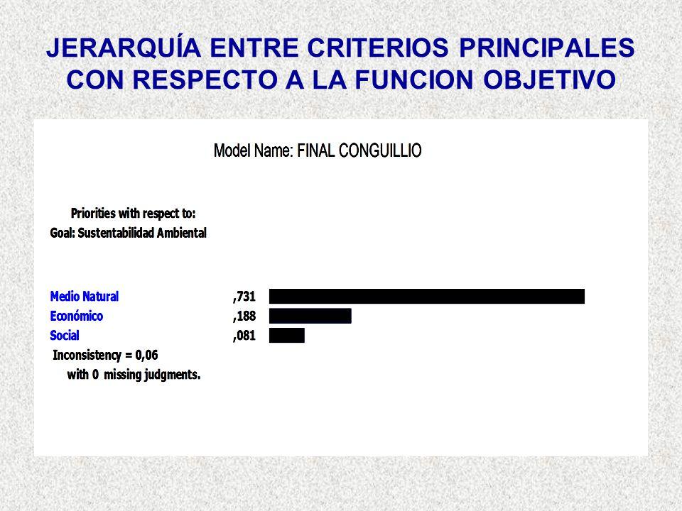 JERARQUÍA ENTRE CRITERIOS PRINCIPALES CON RESPECTO A LA FUNCION OBJETIVO