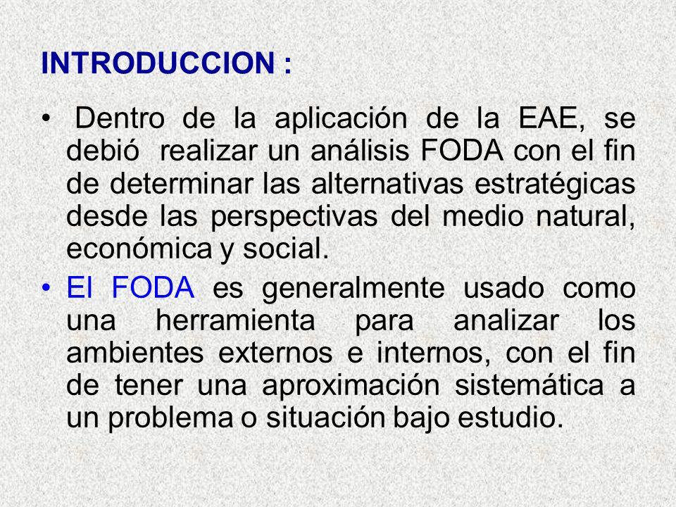 INTRODUCCION : Dentro de la aplicación de la EAE, se debió realizar un análisis FODA con el fin de determinar las alternativas estratégicas desde las